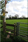 SO9575 : Footpath and stile by Philip Halling