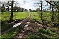 SO9071 : Bridge and farm track by Philip Halling