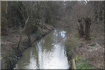 TQ2066 : Hogsmill River by N Chadwick