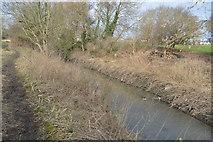 TQ2067 : Hogsmill River by N Chadwick