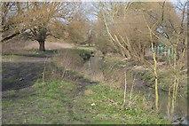 TQ2067 : Loop by Hogsmill River by N Chadwick