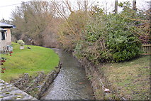TL8760 : River Lark by N Chadwick