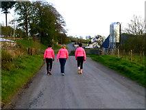H4174 : Gillygooley Walking Club at Mullagharn by Kenneth  Allen