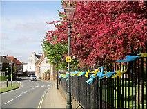 TA0339 : Tour  de  Yorkshire  2018  Beverley  Minster  railings by Martin Dawes