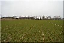TR2257 : Big field by N Chadwick