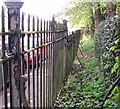 TG2109 : Earlham Road cemetery boundary fence by Evelyn Simak