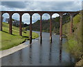 NT5734 : Leaderfoot Viaduct by Mat Fascione