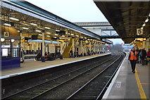 SX9193 : Platform 5, Exeter St Davids Station by N Chadwick