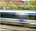 J3373 : Railway, Botanic/Central, Belfast (May 2018) by Albert Bridge