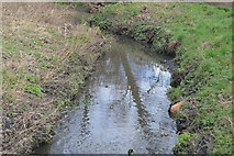 TQ2067 : A small stream by N Chadwick