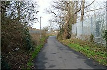TQ1968 : London Loop, Lower Marsh Lane by N Chadwick