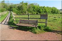SX9066 : Nighingale Park bench by John C