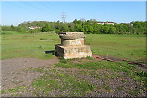 SX9066 : Nightingale Park sewerage  system access point by John C