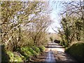 SX2583 : Bridge over River Inny at Trewen Mill by David Smith