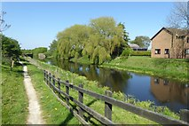SE5726 : Selby Canal in West Haddlesey by DS Pugh