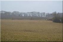 TR2256 : A Kent field in heavy rain by N Chadwick