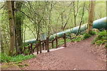 NS8841 : Pipes by the path to New Lanark by Jim Barton