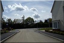 TM2750 : Longwood Fields Development by Adrian Cable