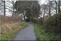 SX9779 : National Cycle Network Route 2 by N Chadwick