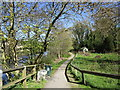 NZ0415 : Footpath by the River Tees, Startforth by Jonathan Thacker