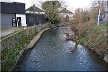 TQ1868 : Hogsmill River by N Chadwick