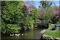 NY2232 : Bassenthwaite footbridge by Des Colhoun