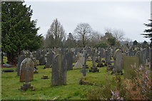 TQ5937 : Kent & Sussex Cemetery by N Chadwick