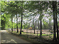 SP8809 : The Road passing the New Car Park in Wendover Woods by Chris Reynolds