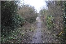 TR2353 : Footpath by Adisham Station by N Chadwick