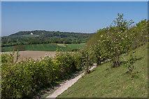 TQ2352 : Below Conybury Hill by Ian Capper