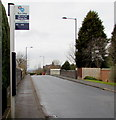 SK1000 : X3 and X12 bus stop, Hill Hook Road, Sutton Coldfield by Jaggery