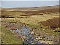 NY7533 : The valley of Trout Beck north of Moor House by Mike Quinn