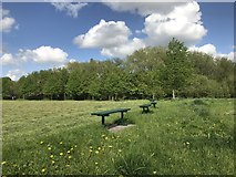 SJ8545 : Benches in Lyme Valley Park by Jonathan Hutchins