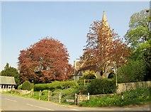 SE3265 : St  John  the  Baptist  Parish  Church  Bishop  Monkton by Martin Dawes
