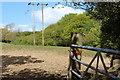 ST1286 : Pylon in field, Gwaun-gledyr-uchaf by M J Roscoe