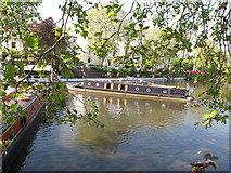 TQ2681 : Webbies, narrowboat, Little Venice Canalway Cavalcade by David Hawgood