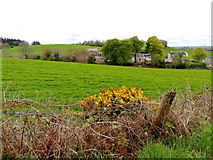 H5064 : Whins, Moylagh by Kenneth  Allen