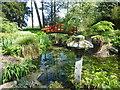TQ2752 : The Japanese Garden, Gatton Park by Marathon