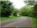 ST1596 : Path into Trelyn Park, Fleur-de-lis by Jaggery