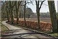 NH6755 : Rosehaugh Estate road by valenta