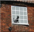 TG2308 : Black cat in the window by Evelyn Simak