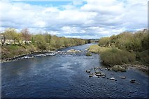 NZ1164 : The River Tyne at Wylam by Graham Robson