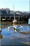SC2667 : Trimaran in Castletown harbour by Richard Hoare