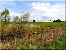 H5375 : Rough ground, Oxtown by Kenneth  Allen