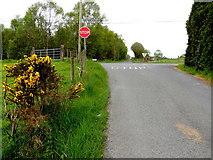 H5375 : Fernagh Road, Drumnakilly / Fernagh by Kenneth  Allen