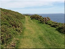 SX5645 : On the South West Coast Path by Stoke Point by Martin Bodman