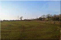 SX4563 : A Cornish Field by N Chadwick