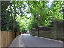 TQ2887 : View down Swains Lane by Marathon