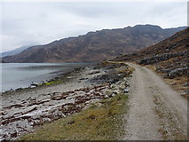 NG8705 : Estate track beside Loch Hourn by Richard Law