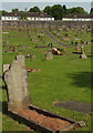 SX9065 : Tree felled, Torquay cemetery by Derek Harper